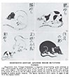 Eighteenth Century Japanese Guide-book Mice 1935