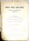 Fancy Mice and Rats: How to Breed and Exhibit, 1920