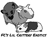 FC's Lil Crittery Exotics