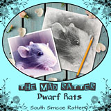 The Mad Ratter