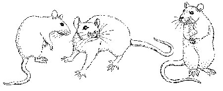 The Rodent Club logo