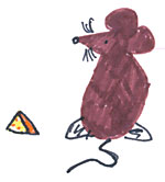 Rat drawing by Allison Cougan