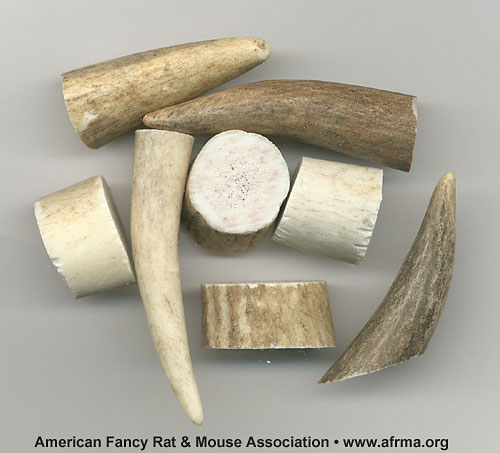 """Critter Chew"" antler chews samples."
