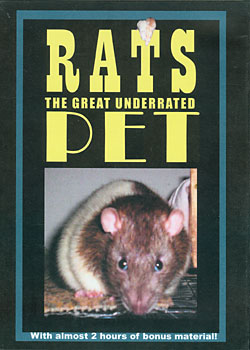 Rats DVD cover