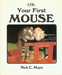 Your First Mouse cover