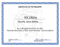 Cute Rat Certificate