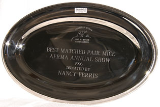 Best Most Matched Pair Mice 1996